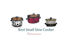 best small slow cooker